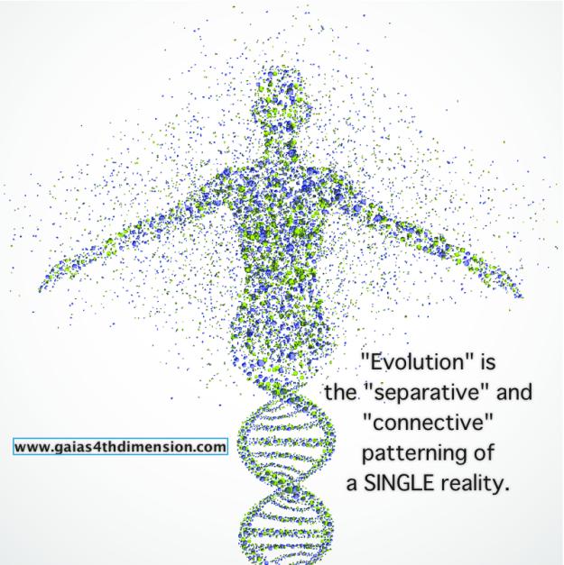 Separative-connective-evolution